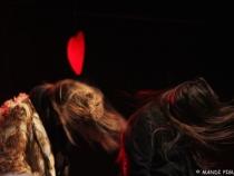 Opole_WOSP_12_01_2014_r_fot_Mandi_Pigulska_facebook_com_MandiRockography_xmj4i0b